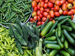 Easing side effects of cancer treatment with diet
