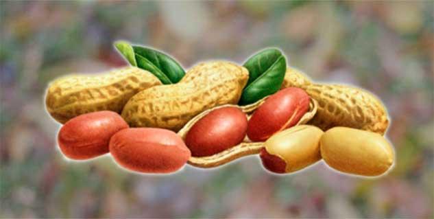 Spring valley diet pills image 10