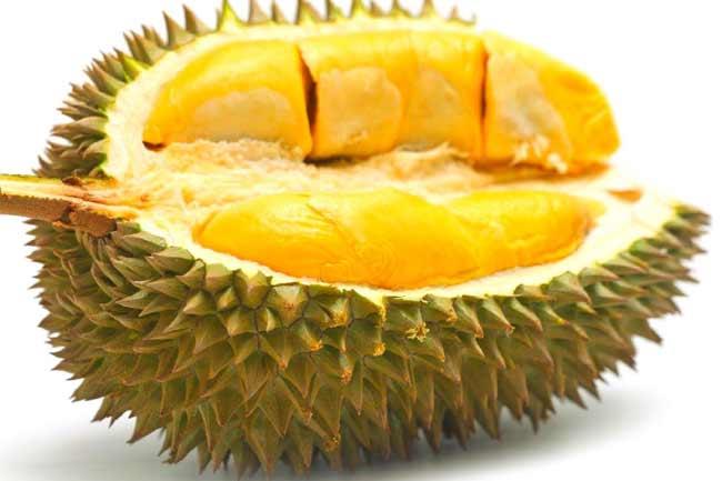 डरियन (Durian) और कैनिस्टेल (Canistel)