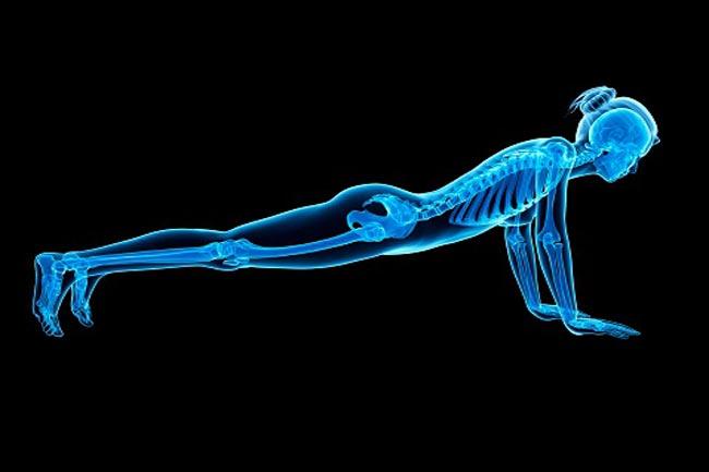 हड्डियों को मजबूत करता है