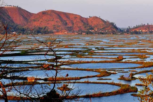 मणिपुर की लोकटक झील