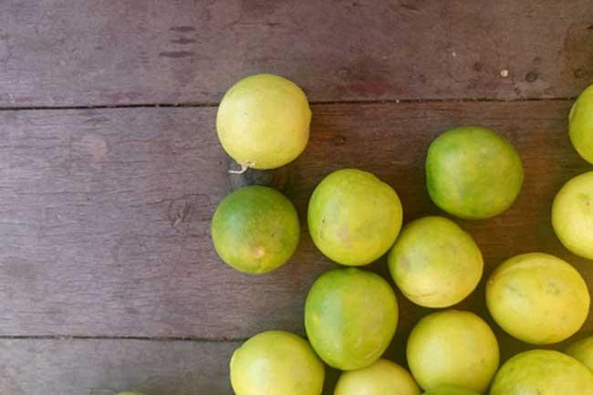 खट्टे फल (Citrus Fruits)