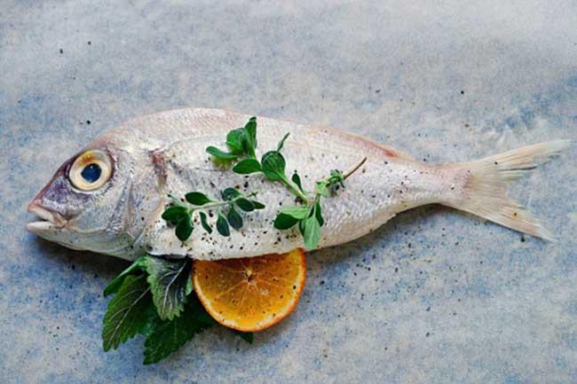 मछली और विटामिन बी कॉम्प्लेक्स