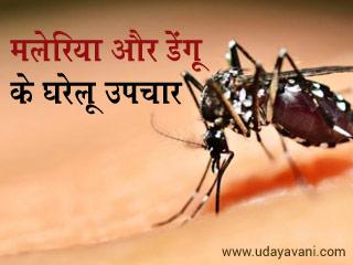 मलेरिया और डेंगू के घरेलू उपचार