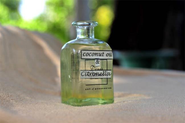 नारियल तेल (Coconut oil)