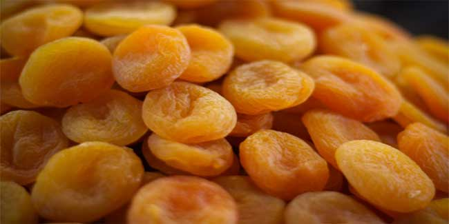 Apricot in hindi