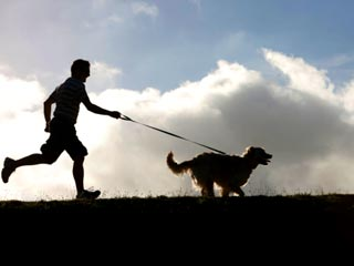 Right ways to run with your dog