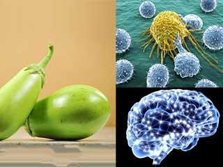 कमाल के स्वास्थ्य गुणों से भरपूर है हरा बैंगन