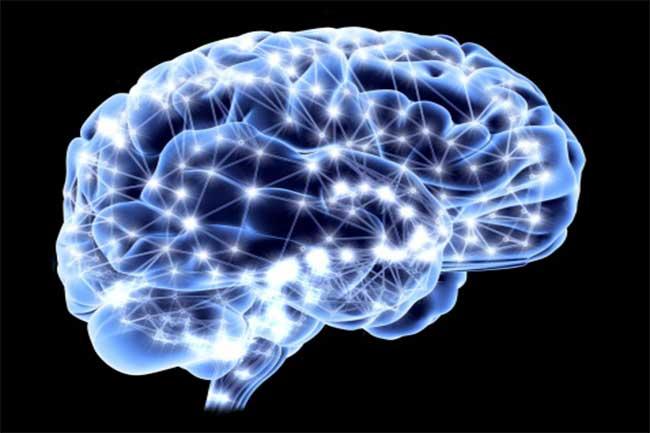 मस्तिष्क के लिए उपयोगी