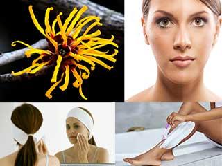5 तरीकों से त्वचा के लिए प्रयोग करें विच हेज़ल