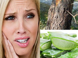 6 प्राकृतिक तरीकों से कम करें मसूड़ों की सूजन