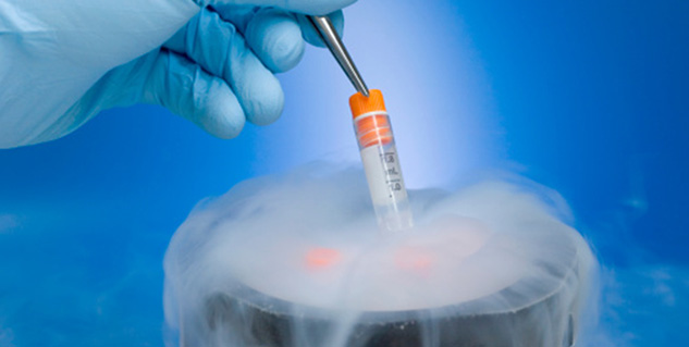 cryopreservation in hindi
