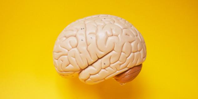 Natural Memory Boosters