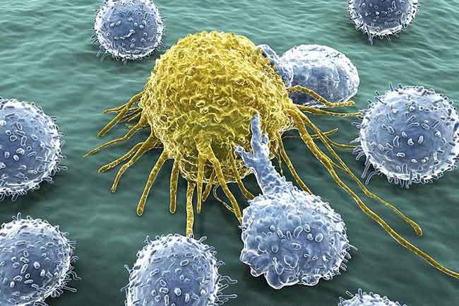 कैंसर की रोकथाम