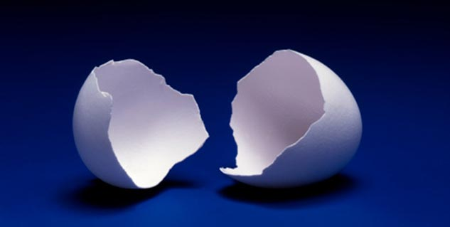 egg shell in hindi
