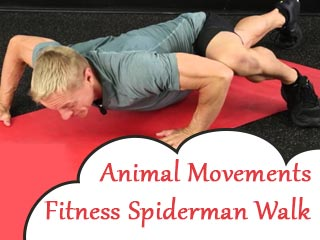 Animal movements fitness spiderman walk