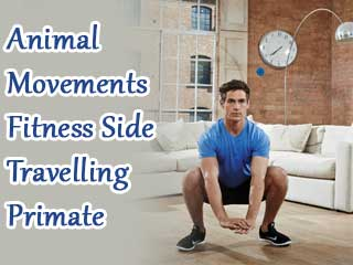 Animal movements fitness side travelling primate