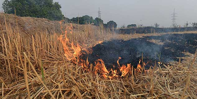 Fire field in hindi