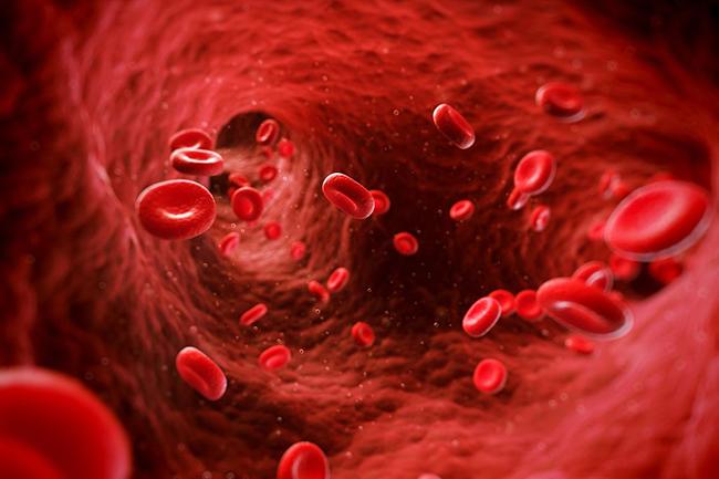 हीमोग्लोबिन बढ़ायें और बॉडी को डिटॉक्स करें