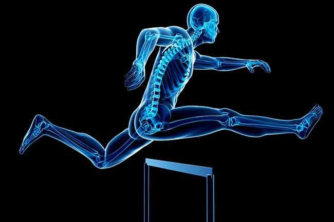 हड्डियों को मजबूत बनायें