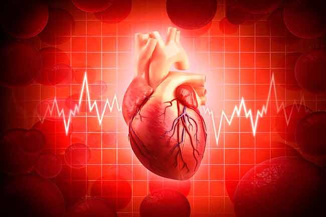 हृदय रोग से बचाव