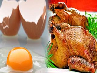 वर्कआउट डाइट : क्या है बेहतर, चिकन या अंडा?