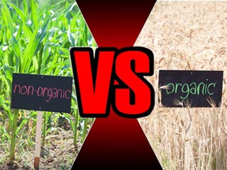 Organic versus non-organic food: Which is better?