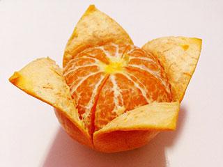 याददाश्त कमजोर है तो खाएं संतरा, भूलने की बीमारी होगी दूर