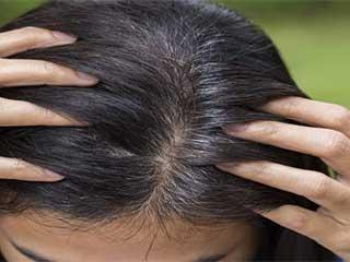 ये पत्तियां बालों को बुढ़ापे तक रखेंगी काला, जानें 5 अन्य फायदे