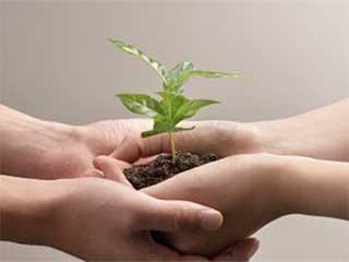 विश्व पर्यावरण दिवस: प्रकृति से है जुड़ने की जरूरत