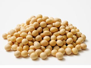 Include soy in your diet to stay fit and reduce your risk of heart diseases