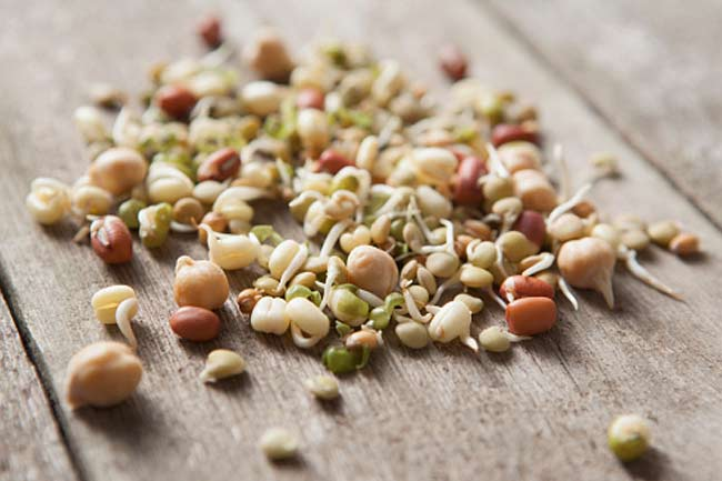 Seeds and sprouts