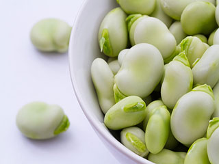 Reasons to include fava beans in your diet, if you've not already