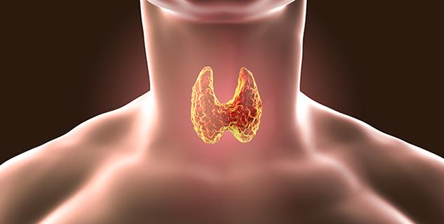 thyroid in hindi