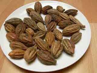 विटामिन-सी से भरपूर हरड़ के 10 फायदे, रोजाना सेवन से रहेंगे बीमारियों से दूर