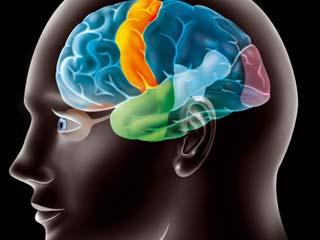 शारीरिक रूप से मजबूत लोगों के पास होता है तेज दिमाग : शोध