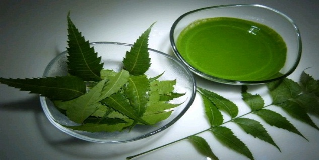 Use Neem to Treat Chickenbox | Home Remedies