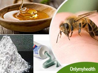 मधुमक्खी के डंक मारने के बाद तुरंत करें ये 3 उपचार, नहीं फैलेगा जहर