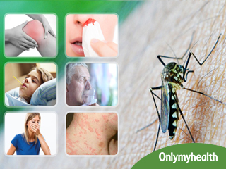 Dengue Fever: Know the Signs and Symptoms