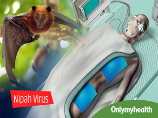 Nipah Virus Alert: All you Need to know about the infection