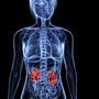 Learn About Chronic Kidney Disease