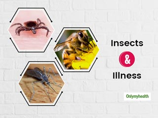 World Mosquito Day 2020: Beware, These 3 Insects Can Make You Sick. Know Tips To Prevent