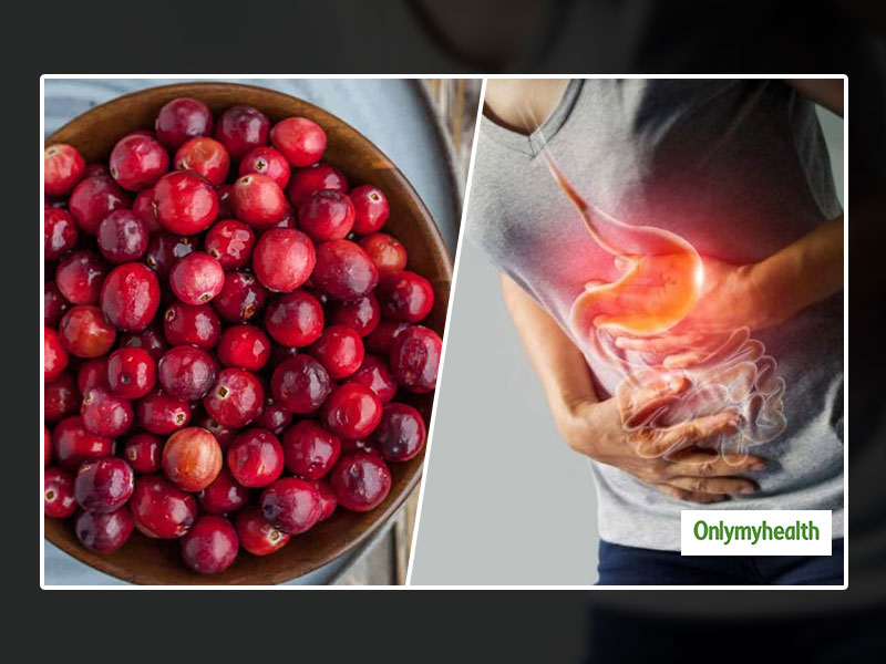 Can Cranberries Cure Gastrointestinal Problems In Adults? Let's Find Out