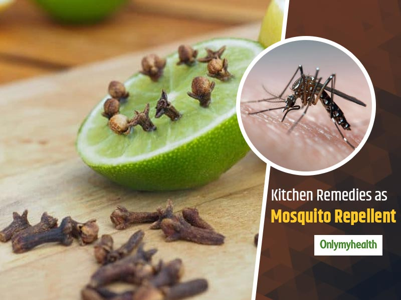 These 6 Kitchen Ingredients Can Successfully Keep Mosquitoes Out Of The House