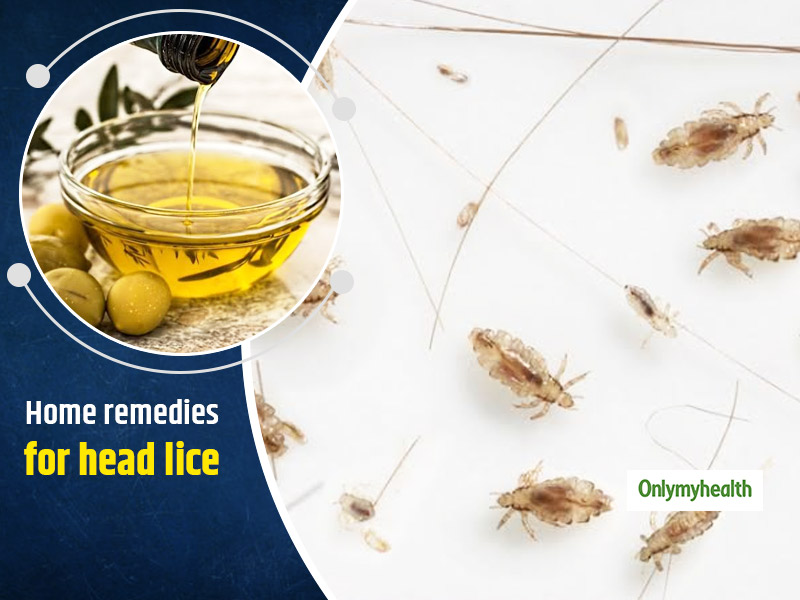 Lice In The Hair Making Life Miserable For You? Make Use Of These 5 Remedies For Freedom