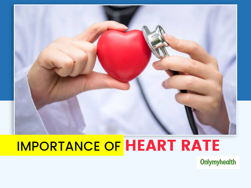 Heart Rate: What Is The Normal Rate And Why Is It Important To Maintain It For A Healthy Body?