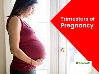Stages Of Pregnancy: Here's The Baby Development, Symptoms And Self Care Tips For All Three Trimesters
