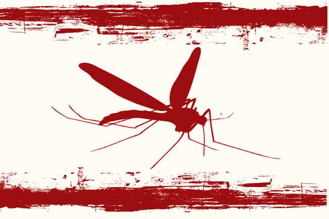 Myth: Mosquitoes can spread HIV.