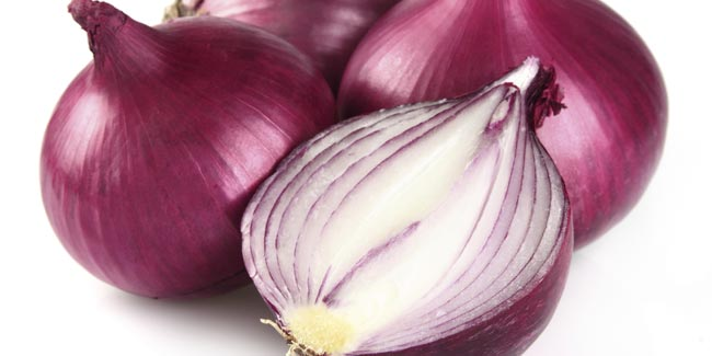 Onion Juice:A Remedy to Minimise Hair Loss and Facilitate Hair Growth