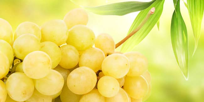 Grape Seed Extract may Protect against Prostate Cancer Cells